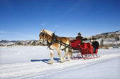 Sleigh ride. — Stock Photo