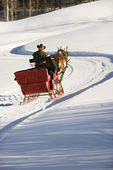 Man in horse drawn sleigh. — Stock Photo