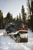 Snowmobile in forest. — Stock Photo