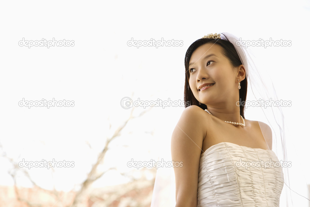 Portrait of an Asian bride.  Stock Photo #9227479