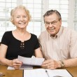Mature couple with bills. — Stock Photo #9248612