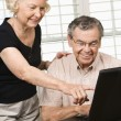 Royalty-Free Stock Photo: Mature couple with laptop.
