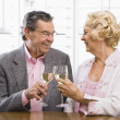 Royalty-Free Stock Photo: Mature couple toasting.