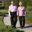 Stock Photo: Mature couple walking.