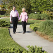 Royalty-Free Stock Photo: Mature couple walking.