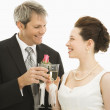 Bride and groom toasting. — Stock Photo #9250445