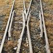 Railroad tracks - 图库照片