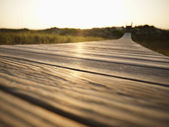 Boardwalk. — Stock Photo
