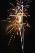 Fireworks at night. — Stock Photo