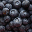 Stock Photo: Pile of blueberries.