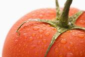 Tomato close up. — Stock Photo