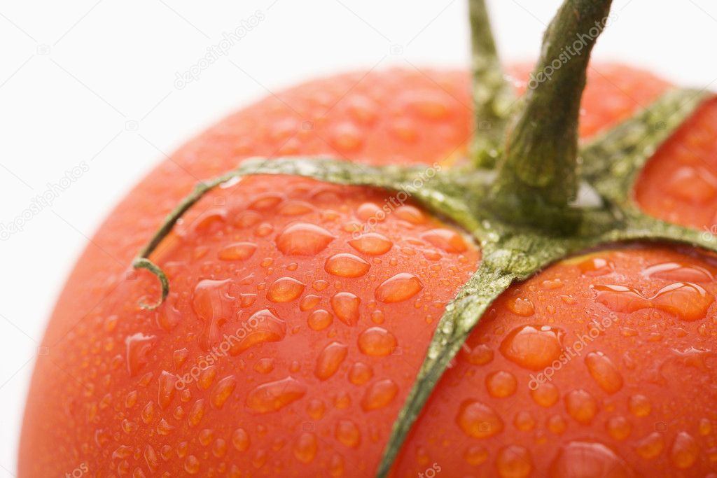 Close up of wet red ripe tomato against white background. — Stock Photo #9280943