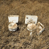 Old toilets in field. — Stock Photo