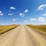 Rural Dirt Road Through Grassland — Stock Photo