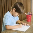 Stock Photo: Boy doing homework.