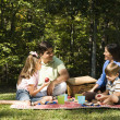 Family picnic. — Foto Stock