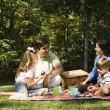 Family picnic. — Stockfoto