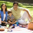 Stock Photo: Family picnicking.