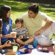 Family picnic. - Stock Photo