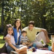 Stock Photo: Happy family picnic.