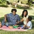 Family picnic. — Stock Photo #9306211