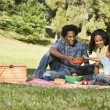 Stock Photo: Picnic in park.