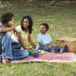 Family picnic in park. — Stock Photo