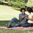Romantic picnic. — Stock Photo