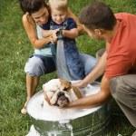 rodina dává psa vykoupat — Stock fotografie