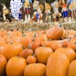 Fall market. — Stock Photo