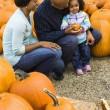 Family getting pumpkin. — Stock Photo