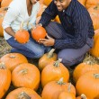 Couple picking pumpkin. — Stock Photo