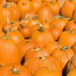 Stock Photo: Autumn pumpkins.