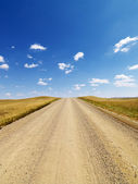 Rural Dirt Road Through Grassland — Stock Photo