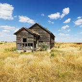 Zdezelowanym opuszczony dom — Zdjęcie stockowe