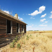 Old building in field. — Foto de Stock