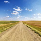 Paese strada sterrata tra i campi — Foto Stock
