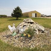 鸡围场艺术. — 图库照片