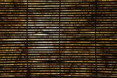 Bamboo shades. — Stock Photo