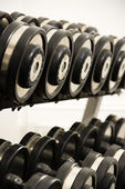 Free weights — Stock Photo