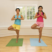 Mulheres de fitness ioga — Fotografia Stock