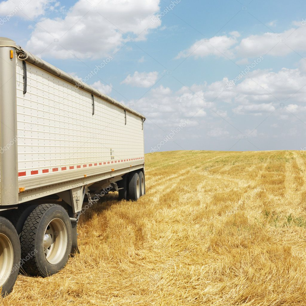 Tractor trailer truck in harvested crop field. — Stock Photo #9304965