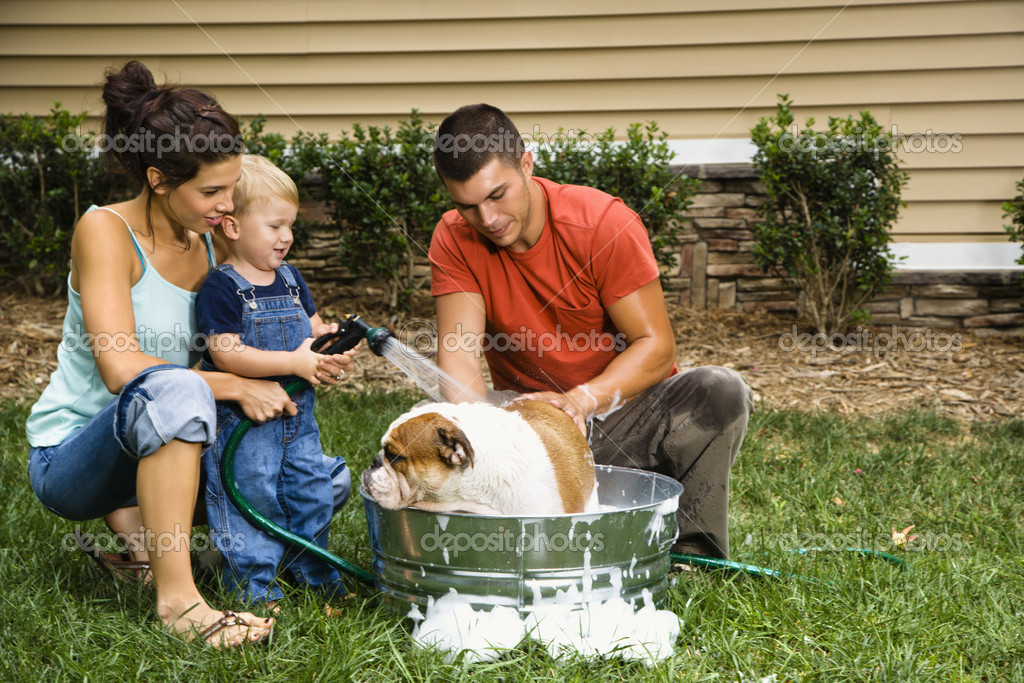 Giving Your Dog A Bath