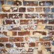 Brick wall — Stock Photo #9311464