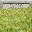"Gravestone with ""Daddy"" - Stock Photo"