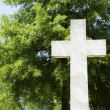 Cross against tree. — Stock Photo #9311899