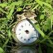 Old broken clock in grass. — Stock Photo