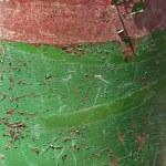 côté du canister vert et rouge — Photo