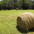 Stock Photo: Hay bale in field.
