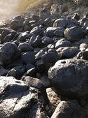 Rocks on ground — Stock Photo